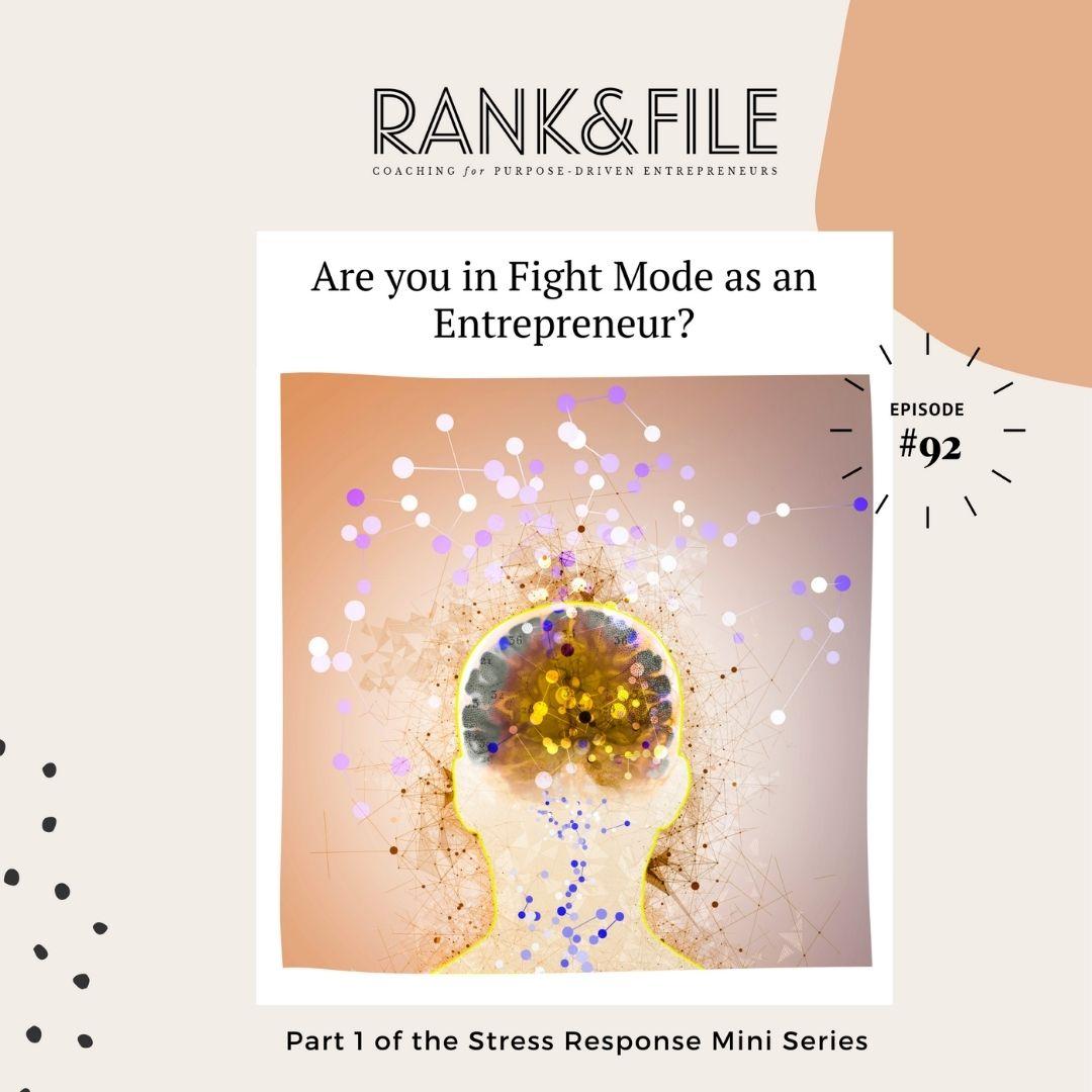 Overcome Stress as a Purpose-Driven Entrepreneur: Fight, Flight, Freeze Training for Impact-Driven Entrepreneurs